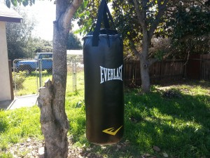 hang punching bag from tree