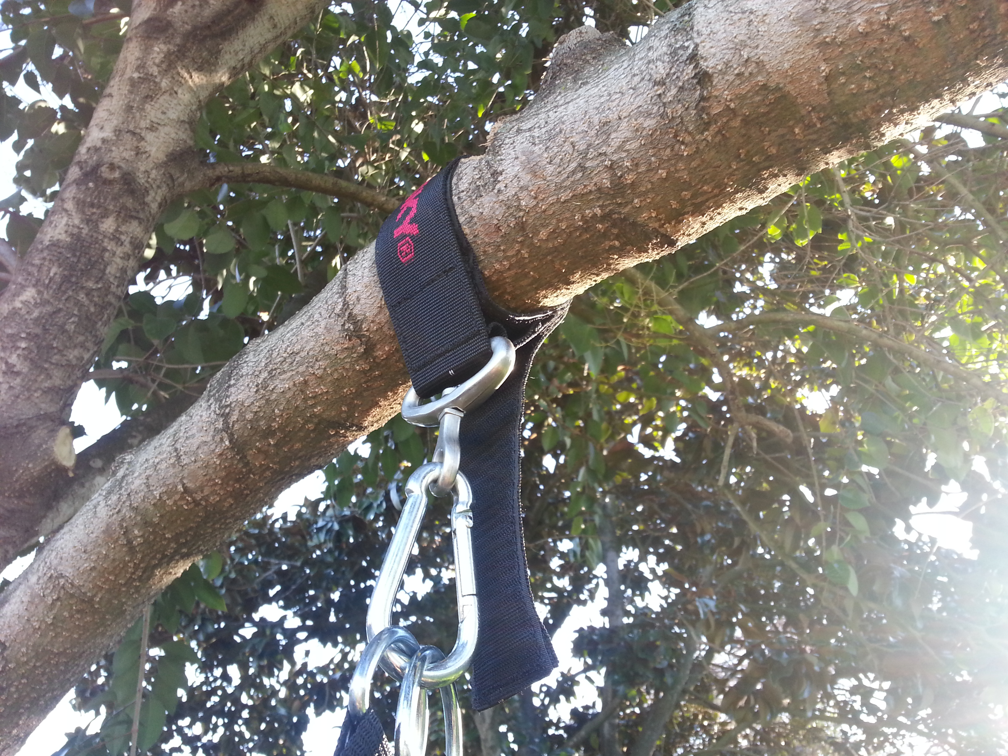 How to Hang a Punching Bag from a Useless Tree